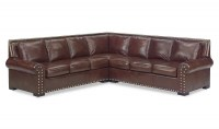 Rianne Leather Sectional