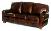 Evan Leather Sleeper Sofa
