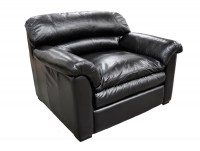 Canyon Leather Chair