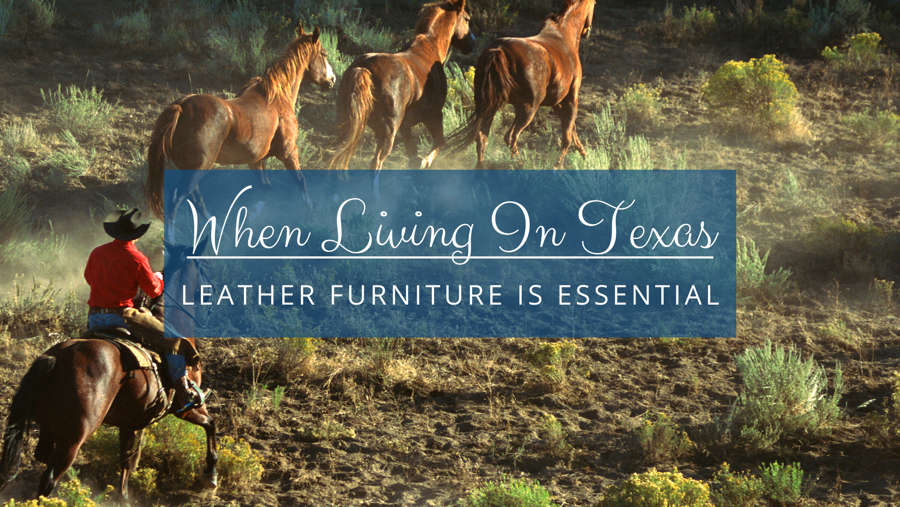 When Living in Texas - Leather Furniture