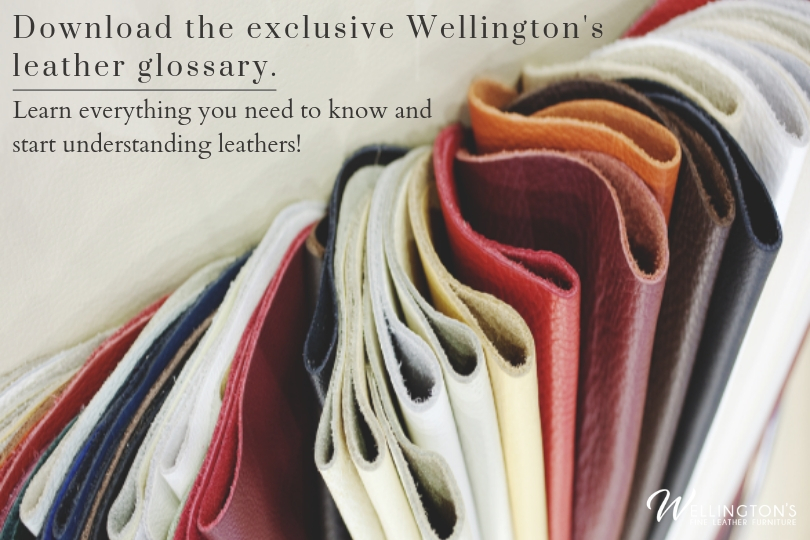 Download the exclusive Wellington