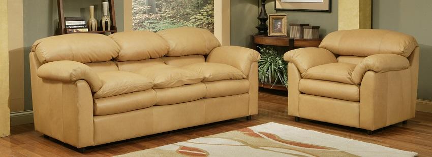 Gentil Phoenix Leather Queen Size Sofa Sleeper