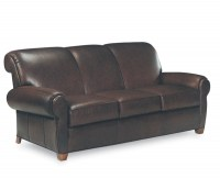 Havannah Leather Sleeper Sofa