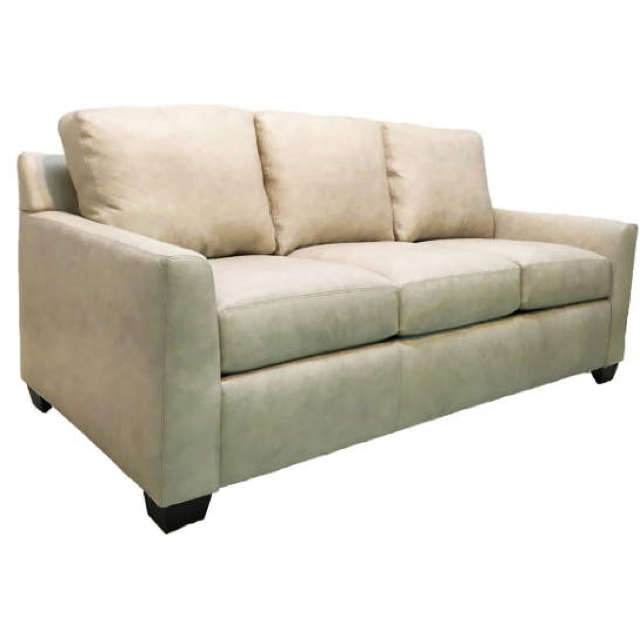 Peters Leather Sofa Sleeper