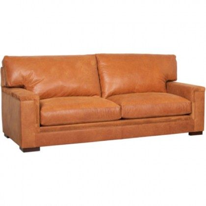 Brown Leather Two Cushion Sofa