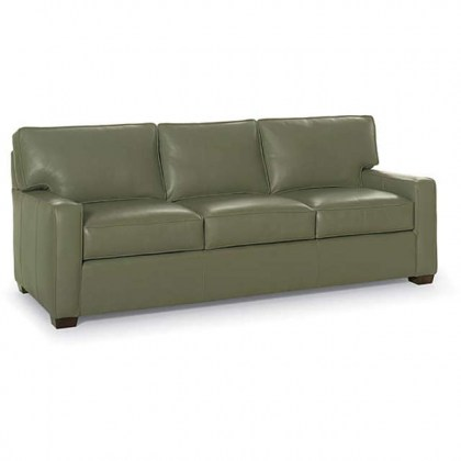 Chadwick Leather Sofa Sleeper