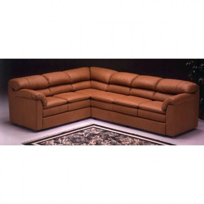 Phoenix Leather Sectional