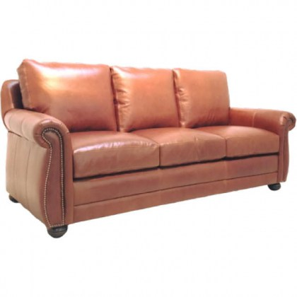 Chapman Leather Sofa Sleeper